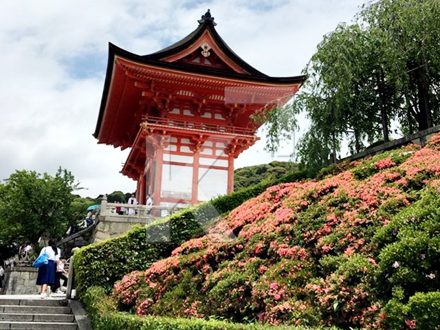 Cultural Experiences in Japan